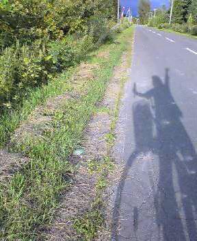 自転車チャリチャリ…
