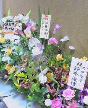 可憐なお花たち